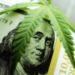 "5 Cannabis Stocks With ""Lit"" Growth Prospects"