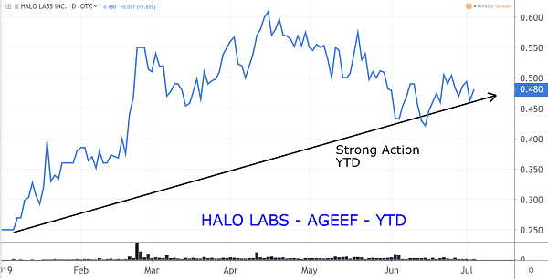 AGEEF Chart